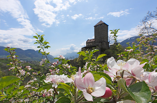 Castle Tirol near Merano in Alto Adige